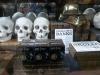 Museum quality replica skulls!